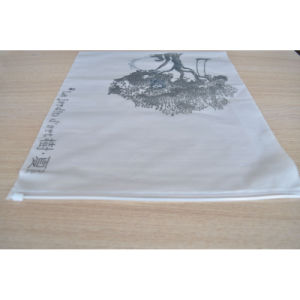 High Quality PE/PVC/HDPE/LDPE Plastic Portable Bag with Zipper pictures & photos