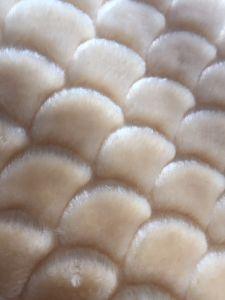 Embossing Flower Pattern Warp Knitting Sherpa Artificial Fur High Plush pictures & photos