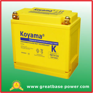 Sealed Maintenance Free Motorcycle Battery 14ah 12V pictures & photos