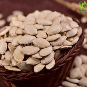 2016 Inner Mongolia Shine Skin Pumpkin Seeds 10cm to Europe