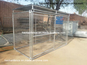 10ft Long Metal Top Roof Welded Mesh Dog Panel Kennel pictures & photos