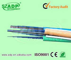Industrial Aerial & Duct 144 288 216 Cores Ribbon Optical Fiber Cable G652D/G657A Gydta/Gydts Singlemode pictures & photos