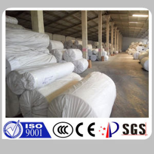 China Abrasives Basis Fabric pictures & photos