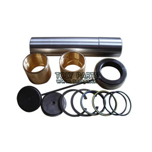 Truck King Pin Repair Kit for Mercedes Benz 3913300019 pictures & photos