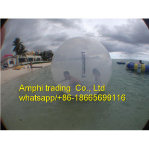 Color and Transparent Water Inflatable Toy pictures & photos