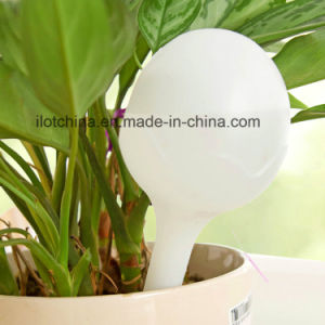 Ilot Ball Shaped Globe Automatic Waterer/Pot Plant Dripper pictures & photos