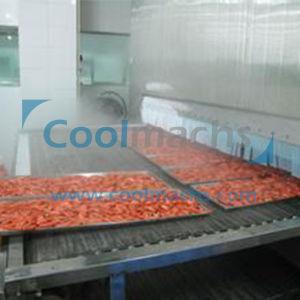 Belt Tunnel Type Quick Freezer for Fish Shrimp Dumplings Bread pictures & photos