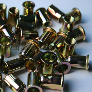 Pan Head Rivet Nut with Carbon Steel pictures & photos