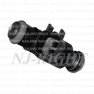 DELPHI Fuel Injector (12592648,FJ705) for BUICK,CHEVROLET,PONTIAC,SATURN pictures & photos