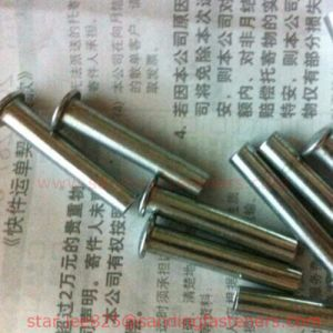 Carbon Steel Round Head Pin / Rivets pictures & photos