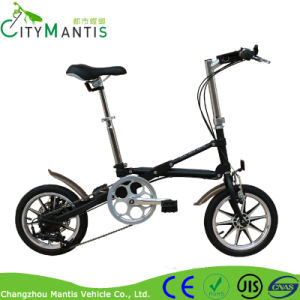 Fashion Foldable Electric Fat Snow Mountain Bike pictures & photos