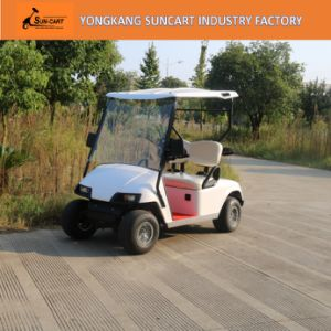 Mini Electric Golf Carts for Sale, 2 Seater Golf Carts for Sale, Electric Golf Cart 48V Battery Powered pictures & photos