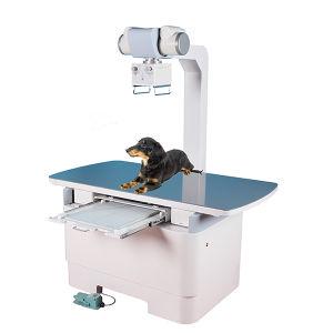 16kw Veterinary X-ray Machine 200mA Veterinary X-ray pictures & photos