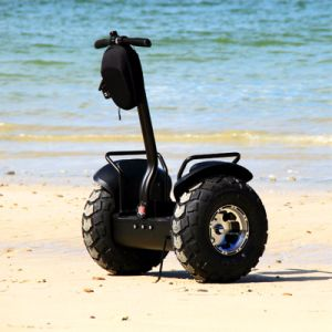 Ecorider Electric Chariot off Road Scooter pictures & photos