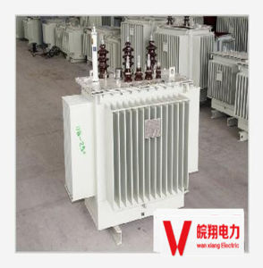 Out-Door Oil-Immersed Transformer/ High Voltage Transformer/800kVA Transformer pictures & photos