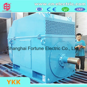 Medium/Large Size High Voltage Electric Water Pump Motor pictures & photos