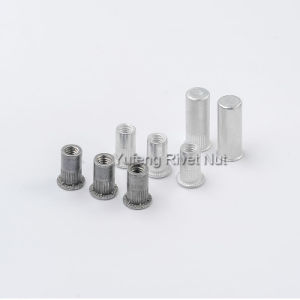 Aluminum Rivet Nut Flat Head/Countersunk Head/Hex Head /Small Head pictures & photos