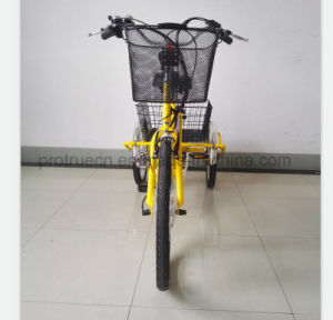 Lithium Battery Tricycle with Small Cargo pictures & photos