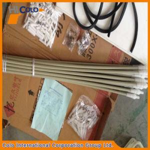 Cl385352 Powder Spray Gun Spare Parts Powder Tube pictures & photos
