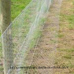 Sailin Hot-Dipped Galvanized Wire Mesh Fence pictures & photos