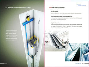 Commercial Indoor Escalator with 30 Degree 1000mm Step Width pictures & photos