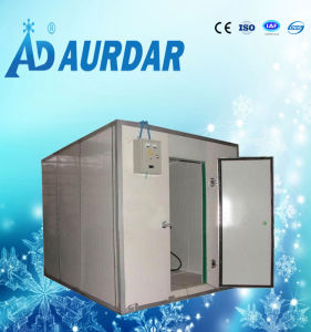 Restaurant Chiller Refrigerator Cold Room pictures & photos