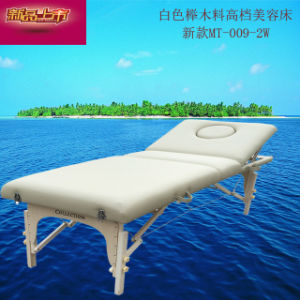 Mt-009-2W Portable and Facial Massage Bed pictures & photos