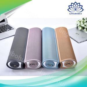 4000mAh DSP-1603 Portable Mini Speaker pictures & photos