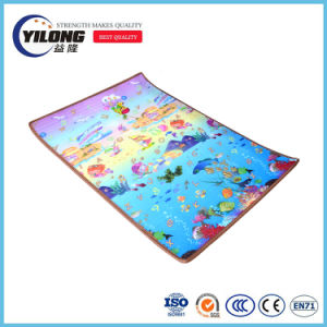 2017 New Toys of Lower Price Educational Babuy Animal Play Mat pictures & photos