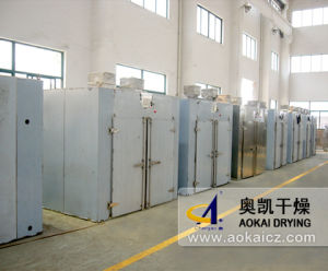 CT-III Hot Air Circulating Drying Oven pictures & photos