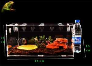 Custom, Technology Improved, Bespoken Acrylic Reptile House pictures & photos