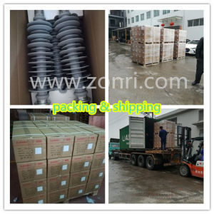 Fxbw-6/70 6kv70kn Suspension Composite Insulator pictures & photos