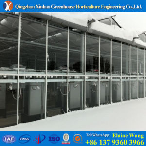 Galvanized Steel Frame Venlo PC Greenhouse pictures & photos
