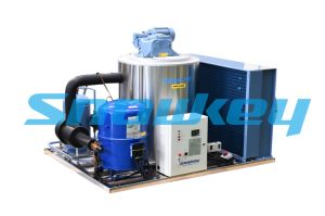 Snowkey Low Price Reliable Flake Ice Machine pictures & photos