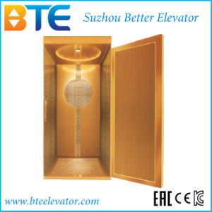 Ce Mrl Home Elevator for Residential Villa with Wooden Decoration