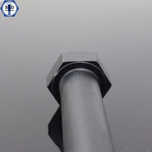 Hexagonal High Tensile Bolts SAE J429 Gr. 5 Bolts pictures & photos