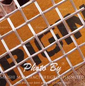 Wire Mesh Stainless Steel Screen pictures & photos