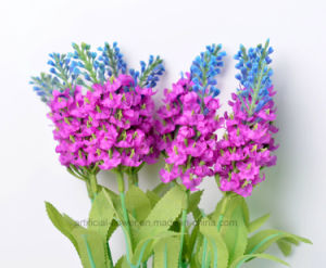 Colorful Handmade Beautiful Lavender Bush Flower pictures & photos