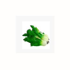 Simulation of Vegetables USB Cabbage USB Flash Drive PVC Gift Custom Logo 256GB pictures & photos
