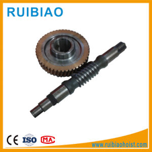 Stainless Steel Long Master Worm Gear Drive Shaft Wheel pictures & photos
