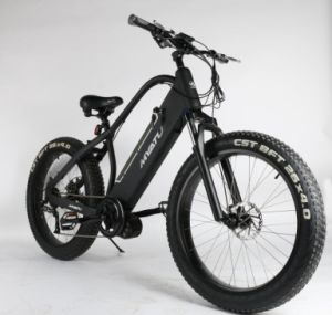 Hi Power Fat Electric Mountian Bike Fat with 750W 48V/13ah pictures & photos