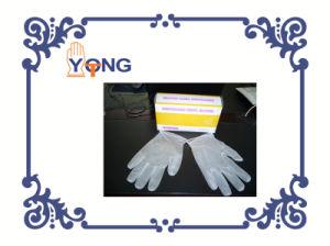 Plastic Gloves/PVC Gloves/PE Gloves