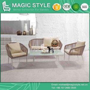 Special Weaving Sofa P. E Wicker Sofa New Design Sofa (Magic Style) pictures & photos