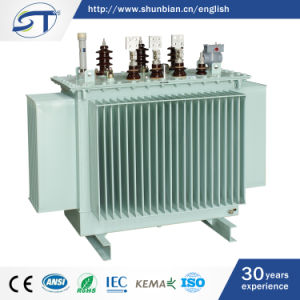 12/0.4kv 3 Phase Oil Immersed Power Distribution Transformer pictures & photos