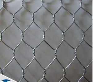 Hot Dipped Galvanized Hexagonal Protecting Wire Mesh/Hexagonal Wire Netting pictures & photos