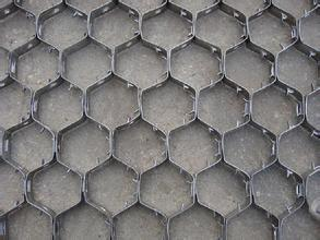 Testudinate Mesh of Stainless Steel