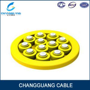 Gjbfjv Breakout Tight Buffer 24 Core Fiber Optic Cable