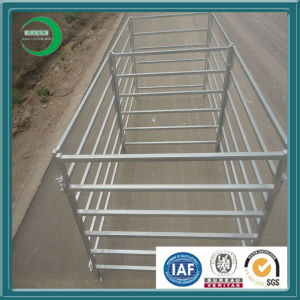 Hot Selling Livestock Panel on Sale (XY-J003) pictures & photos