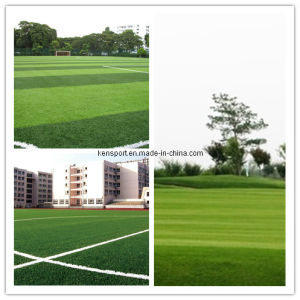 Synthetic Turf/Artificial Grass as Good as Real Grass (JDS-50) pictures & photos