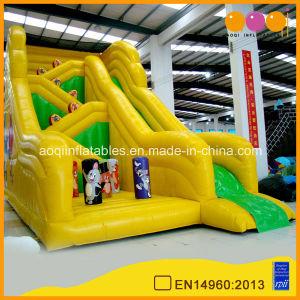 Amusement Children Inflatable Slide for Sale (AQ966) pictures & photos